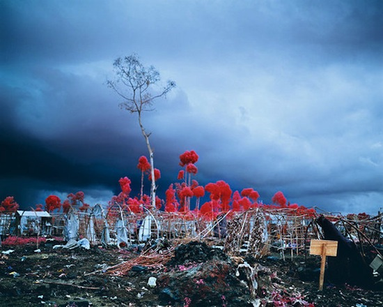 Richard Mosse, The Enclave, Ireland Pavillion, Venice Biennale